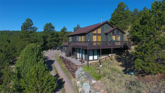307 Sun Way, Bailey, CO 80421 (#6073928) :: The DeGrood Team