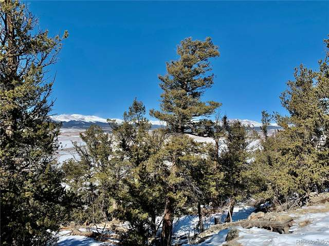2885 Middle Fork Vista, Fairplay, CO 80440 (#6080589) :: The Dixon Group