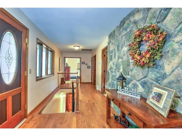 20134 Cottontail Road, Morrison, CO 80465 (#6081994) :: The Peak Properties Group