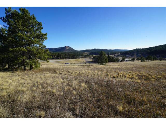 19 Bull Dogger Drive, Bailey, CO 80421 (MLS #6085153) :: 8z Real Estate