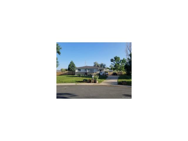 113 Ash Avenue, Castle Rock, CO 80104 (#6086531) :: The Peak Properties Group