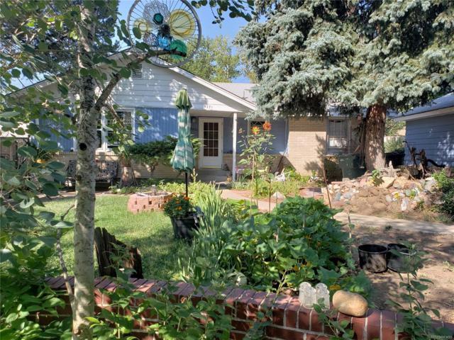 9271 Hoffman Way, Thornton, CO 80229 (#6088673) :: House Hunters Colorado