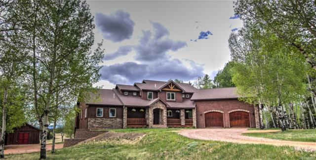1471 County 51 Road, Divide, CO 80814 (#6089165) :: Bring Home Denver with Keller Williams Downtown Realty LLC