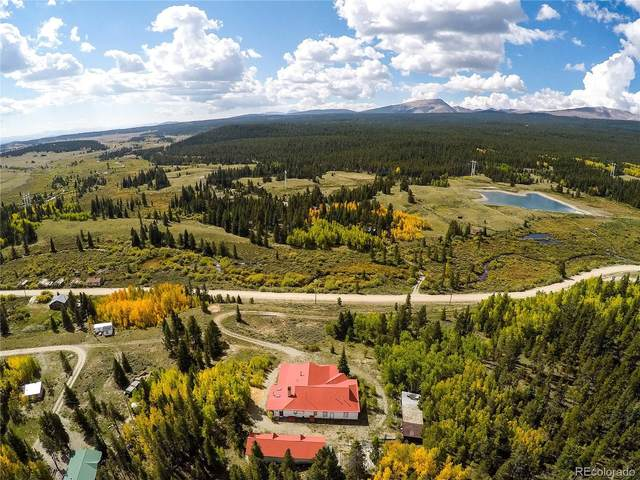 455 Mosquito Pass Road, Alma, CO 80420 (MLS #6090050) :: 8z Real Estate