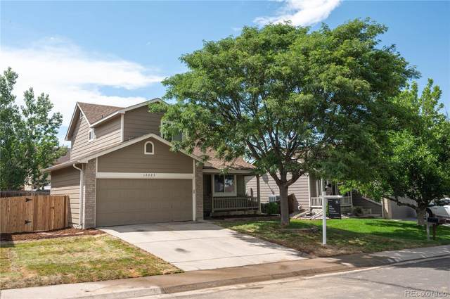 12223 Glencoe Street, Thornton, CO 80241 (#6091055) :: HomeSmart Realty Group
