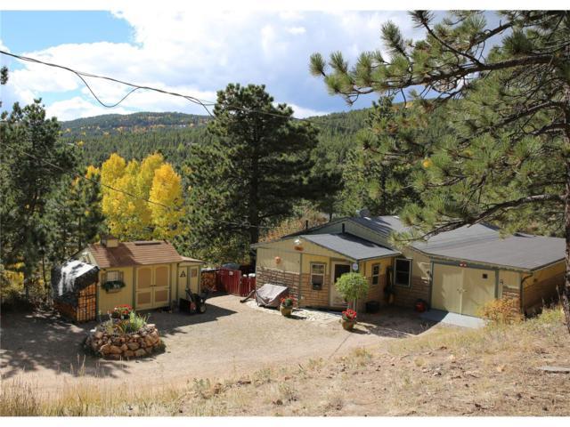 160 Copperdale Lane, Golden, CO 80403 (MLS #6091233) :: 8z Real Estate