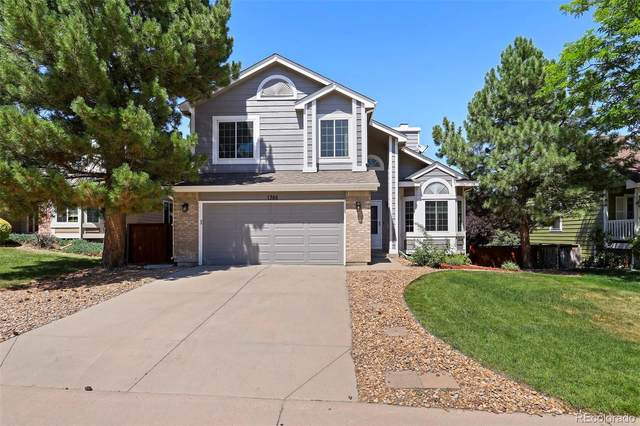 1385 Ascot Avenue, Highlands Ranch, CO 80126 (#6091938) :: The HomeSmiths Team - Keller Williams