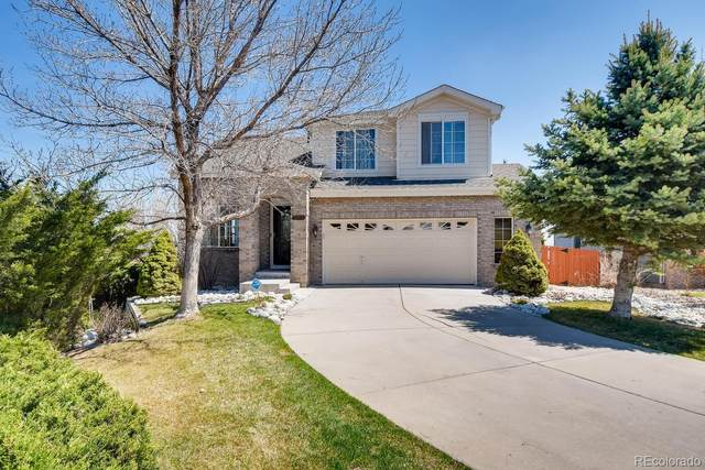 1004 E 96th Place, Thornton, CO 80229 (#6095060) :: HomeSmart Realty Group