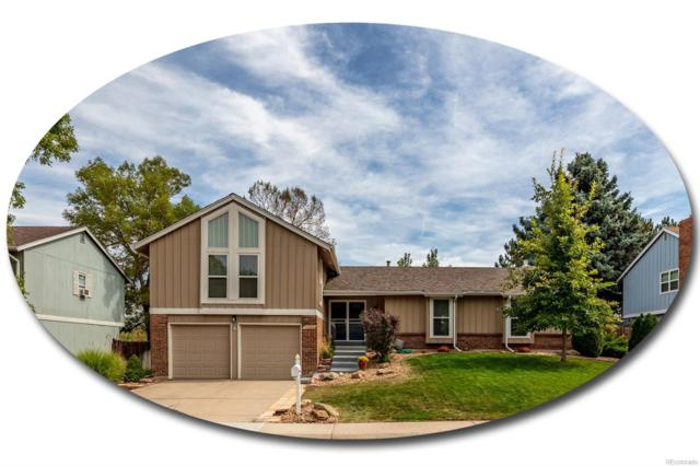 7284 S Harrison Way, Centennial, CO 80122 (#6097006) :: House Hunters Colorado
