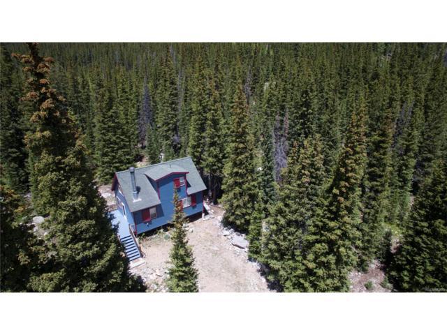 1293 Rainbow Road, Idaho Springs, CO 80452 (MLS #6098427) :: 8z Real Estate