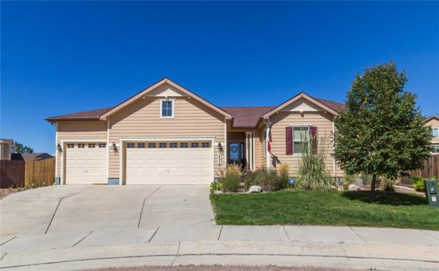 14674 Air Garden Lane, Colorado Springs, CO 80921 (#6101085) :: Wisdom Real Estate