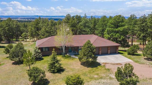 479 S White Tail Drive, Franktown, CO 80116 (#6102913) :: The DeGrood Team