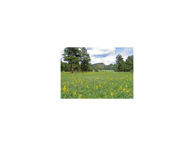 7531 73 Highway, Evergreen, CO 80439 (MLS #6103379) :: 8z Real Estate