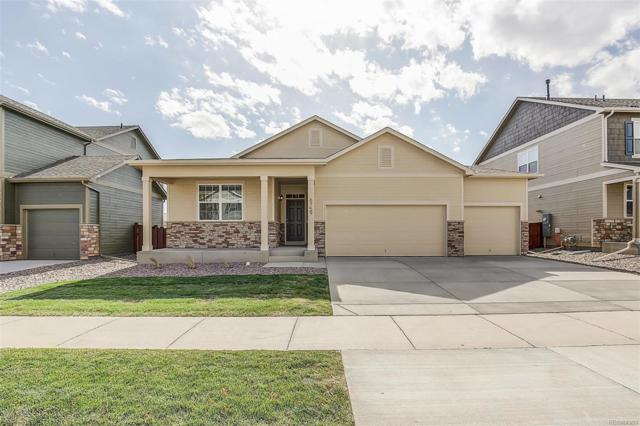 2247 Shadow Rider Circle, Castle Rock, CO 80104 (#6105520) :: Structure CO Group
