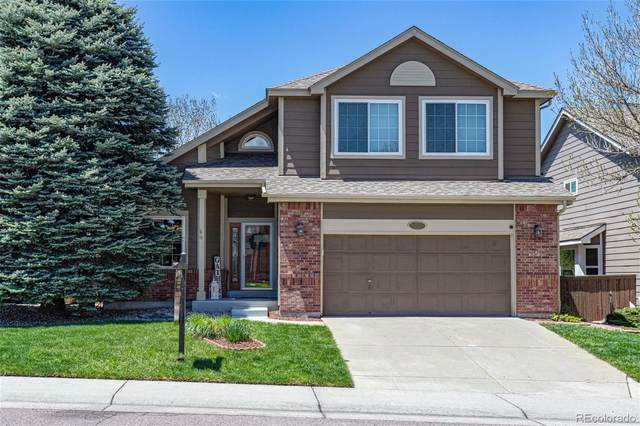 9073 Edgewood Street, Highlands Ranch, CO 80130 (#6106787) :: Mile High Luxury Real Estate