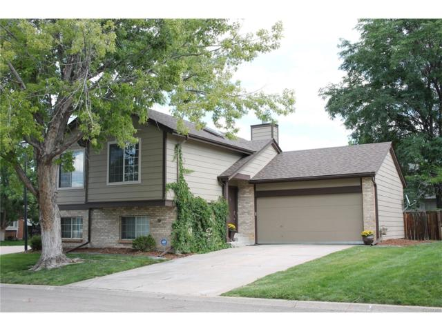 9312 Balsam Court, Highlands Ranch, CO 80126 (MLS #6107444) :: 8z Real Estate