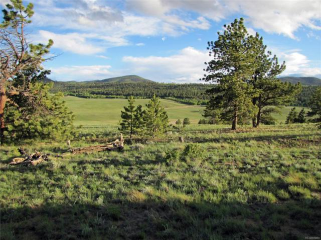 359 Wagon Wheel Road, Hartsel, CO 80449 (#6109833) :: The Griffith Home Team