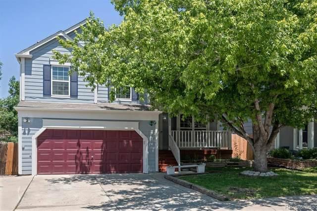 7800 Elmwood Street, Littleton, CO 80125 (#6109963) :: The HomeSmiths Team - Keller Williams