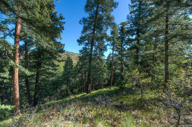 0 Mill Hollow Road, Littleton, CO 80127 (#6112744) :: Briggs American Properties