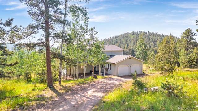 12491 S Ridge Road, Conifer, CO 80433 (MLS #6114940) :: Bliss Realty Group