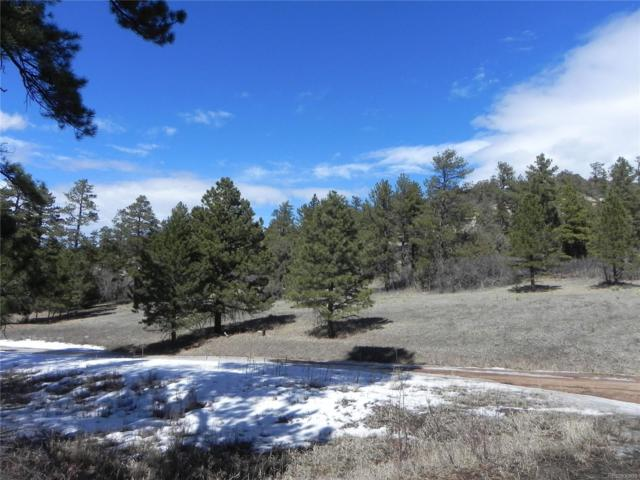 4755 Mohawk Drive, Larkspur, CO 80118 (#6115527) :: 5281 Exclusive Homes Realty