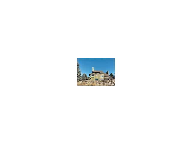 31551 Horseshoe Drive, Evergreen, CO 80439 (#6117641) :: The Peak Properties Group