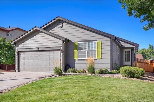 14436 E Elk Place, Denver, CO 80239 (#6118597) :: milehimodern