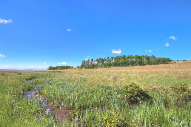Lot 13 Co Road 18, Fairplay, CO 80440 (#6119038) :: The HomeSmiths Team - Keller Williams