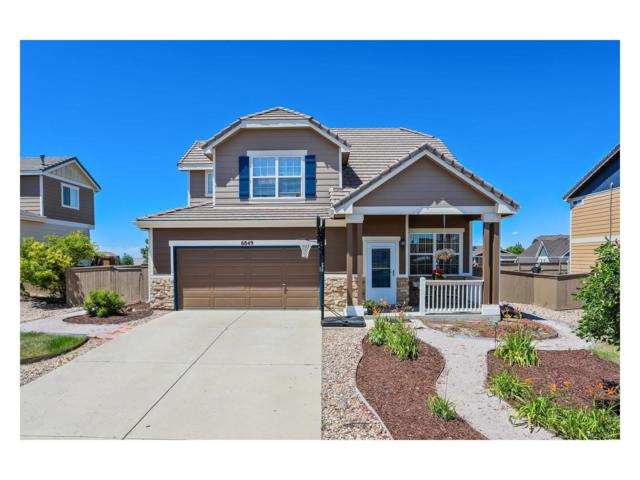 6849 Shannock Avenue, Castle Rock, CO 80104 (#6119447) :: The Griffith Home Team
