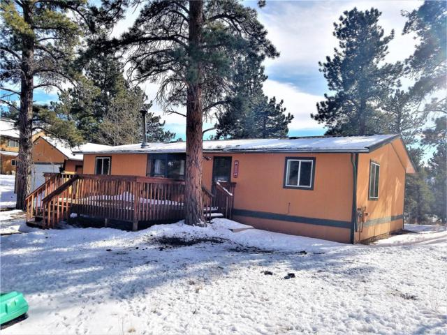 102 El Lobo Lane, Bailey, CO 80421 (#6120033) :: The Heyl Group at Keller Williams
