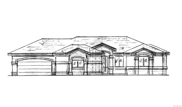300 Indigo Trails, Brighton, CO 80601 (#6121204) :: The City and Mountains Group
