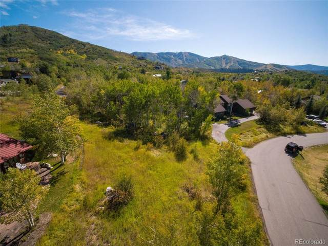 477 Blue Sage Circle, Steamboat Springs, CO 80487 (#6121307) :: Briggs American Properties
