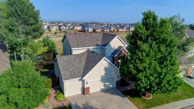 10275 Rowlock Way, Parker, CO 80134 (#6125754) :: My Home Team
