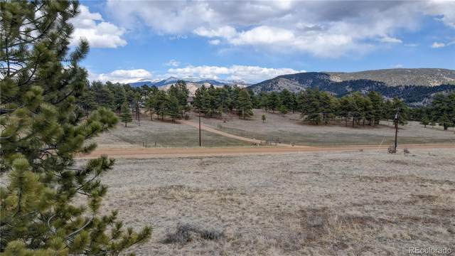 378 High Chateau Road, Florissant, CO 80816 (MLS #6127197) :: 8z Real Estate