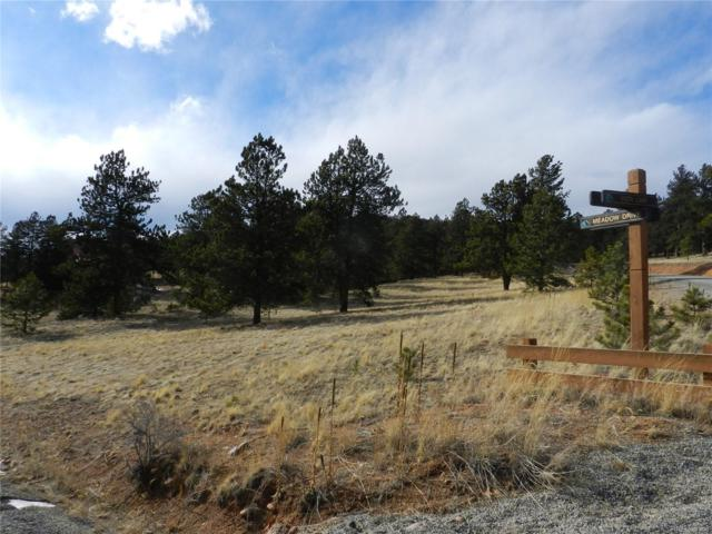 000 Vista Lane, Pine, CO 80470 (MLS #6135775) :: 8z Real Estate