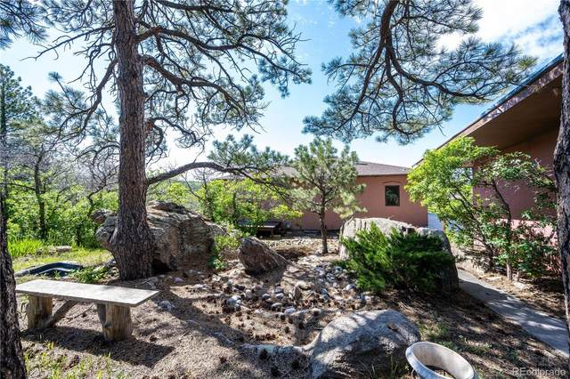 2596 Valley Drive, Castle Rock, CO 80104 (#6136832) :: The Harling Team @ HomeSmart