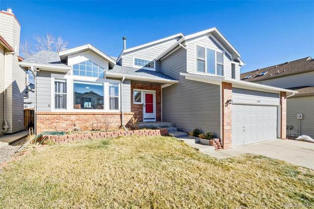 6518 S Xenophon Street, Littleton, CO 80127 (#6137493) :: The Healey Group