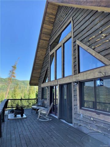 61135 Hill Street, Clark, CO 80428 (#6138537) :: Wisdom Real Estate