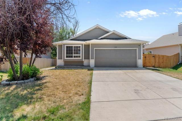 330 N Holcomb Street, Castle Rock, CO 80104 (MLS #6139194) :: Clare Day with Keller Williams Advantage Realty LLC