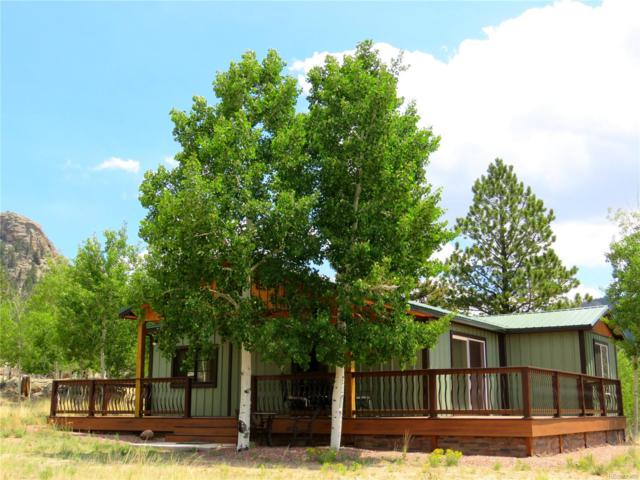129 Sunfish Drive, Lake George, CO 80827 (MLS #6142842) :: 8z Real Estate