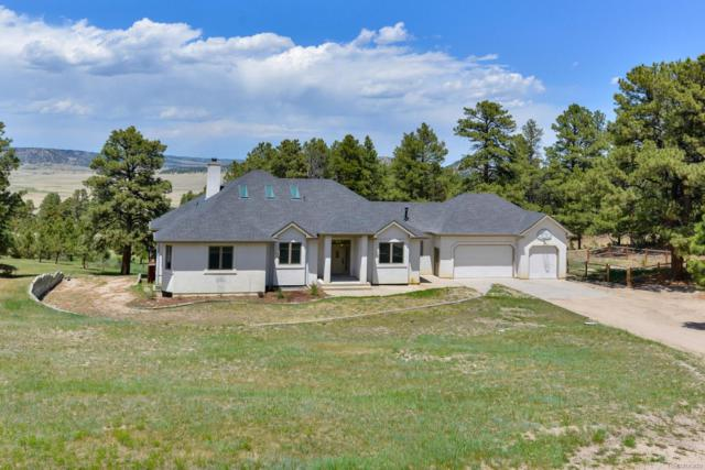 18155 Starved Rock Lane, Peyton, CO 80831 (#6148161) :: Wisdom Real Estate