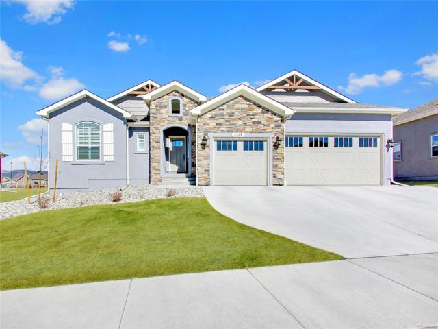 1215 Night Blue Circle, Monument, CO 80132 (#6158898) :: Bring Home Denver