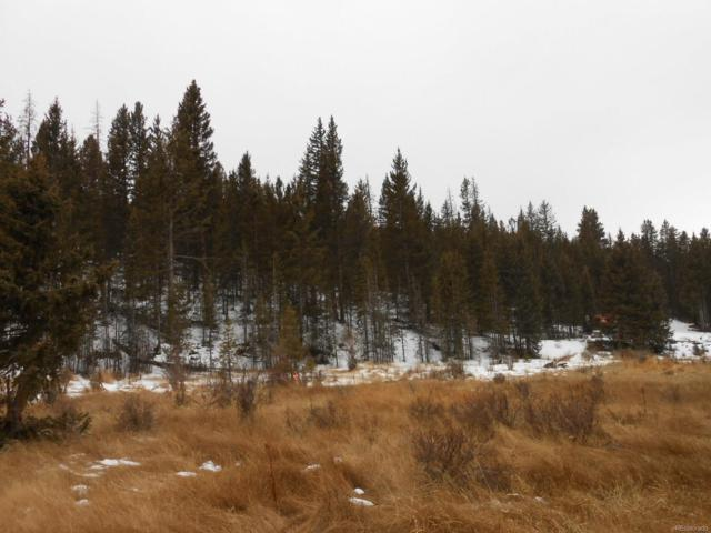 000 S Highway 67 Highway, Cripple Creek, CO 80813 (#6163694) :: Wisdom Real Estate