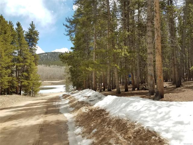 70 Mallard Road, Leadville, CO 80461 (#6168773) :: The Pete Cook Home Group