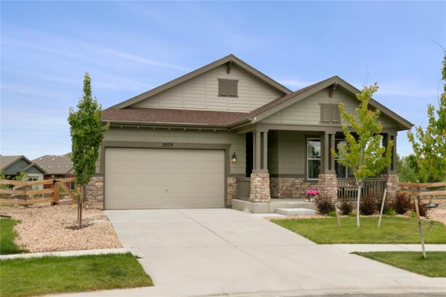 2029 Sicily Circle, Longmont, CO 80503 (#6171488) :: Mile High Luxury Real Estate
