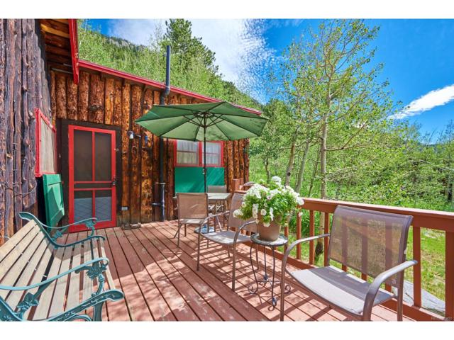 925 Klondyke Avenue, Nederland, CO 80466 (MLS #6173013) :: 8z Real Estate