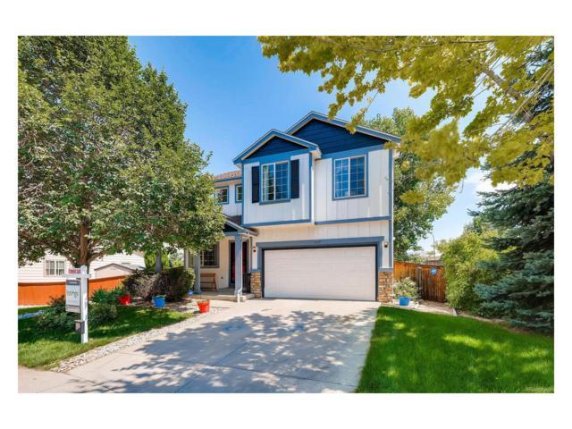 1439 Roadrunner Court, Highlands Ranch, CO 80129 (MLS #6174229) :: 8z Real Estate
