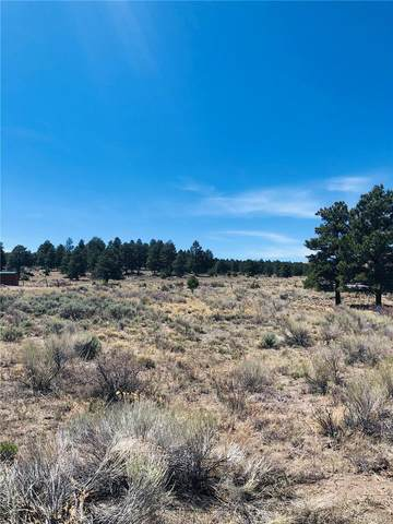 21 W Conejos Trails Drive, Antonito, CO 81120 (#6181735) :: The DeGrood Team