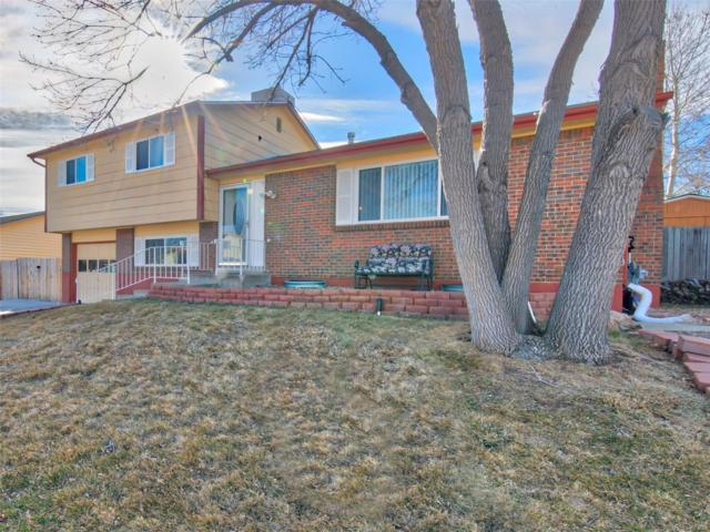 6310 W 110th Place, Westminster, CO 80020 (#6182539) :: The Peak Properties Group