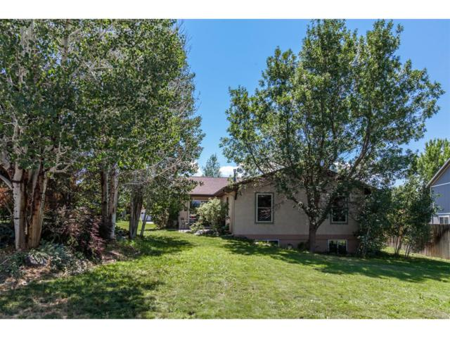 330 S Golden Drive, Silt, CO 81652 (MLS #6184056) :: 8z Real Estate